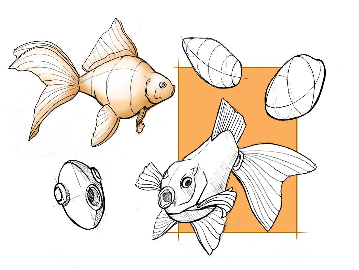 Reducing Form – Goldfish